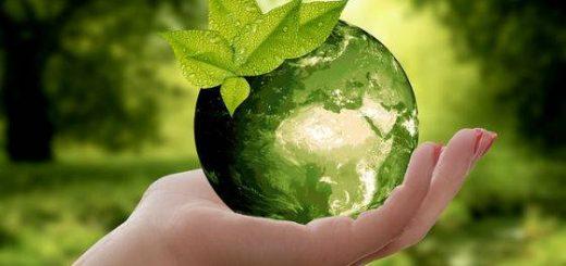 Vivere un mese intero senza plastica