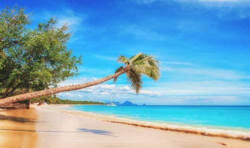 capodanno al caldo caraibi