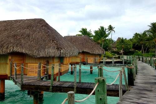 capodanno al caldo in polinesia