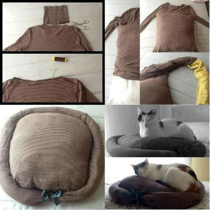 cuccia con maglione usato