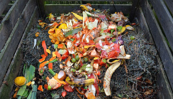 pagare meno TARSU con la compostiera