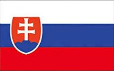 slovacchia reddito cittadinanza